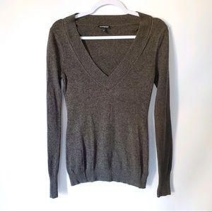 Express V-NECK Soft Stretchy Sweater